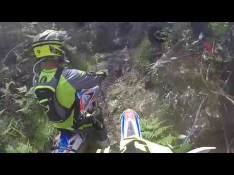 Wess XL Lagares Michele Bosi Race 2018