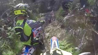 Wess XL Lagares Michele Bosi Race 2018