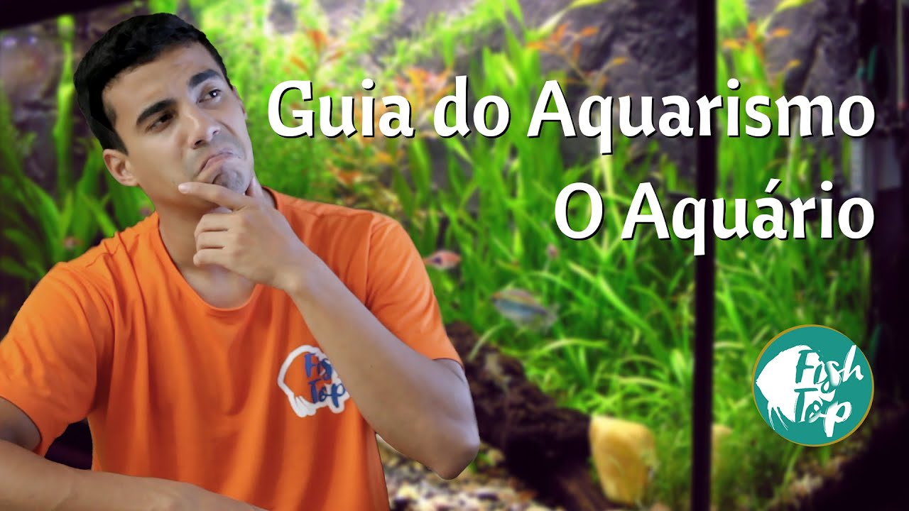 Guia do Aquarismo 01 - O Aquário