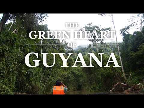 The Green Heart Of Guyana