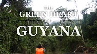 The Green Heart Of Guyana