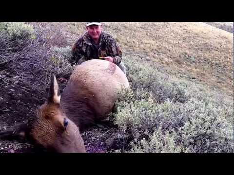 Nevada Elk Hunt In Jarbidge