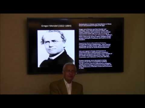 Gregor Mendel And The Rediscovery Of His Laws Of Inheritance