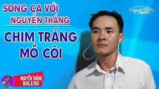 Karaoke | Chim Trắng Mồ Côi | Thiếu Giọng Nữ | Song Ca Với Nguyễn Thắng
