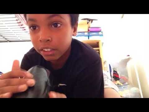 My penny loafers unboxing