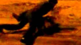 Download Video Kamasutra hda la virgen.3GP MP3 3GP MP4
