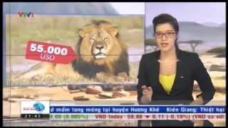Đằng sau cái chết của chú Sư tử Cecil