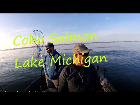 Crazy Coho Action Lake Michigan