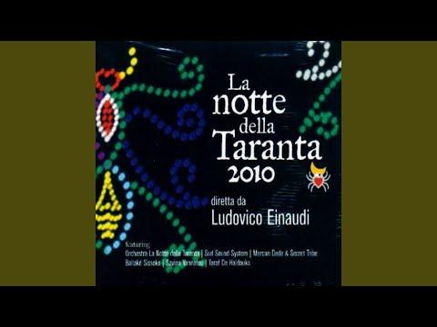 Introductio ad regnum tarantulae (feat. Mauro Durante)