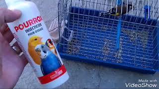 علاج القمل عند المقنين و عند كل الطيور