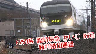 E257系 臨時 特急 かいじ 83号 新井踏切通過