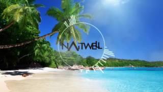 Deorro feat. Elvis Crespo & Pitbull - Bailar (Naitwell Bootleg Edit)