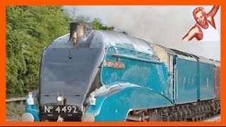 Steam Trains At High Speed Compilation 150 Kph 90 Mph On Uk Main Line Bittern 60019
