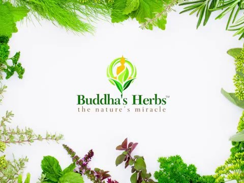 Buddha's Herbs is listed (or ranked) 45 on the list The Best Tea Brands
