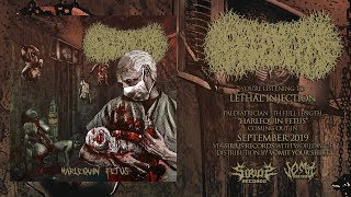 PAEDIATRICIAN - LETHAL INJECTION [SINGLE] (2019) SW EXCLUSIVE