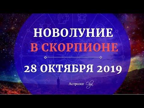 ТРАНСЦЕНДЕНТНОЕ НОВОЛУНИЕ в СКОРПИОНЕ 28 ОКТЯБРЯ 2019. Астролог Olga