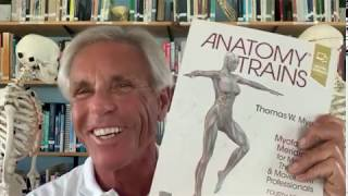 Tom Myers discusses Anatomy Trains 4th edition!