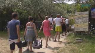 Camping Janse Zoutelande in 3 minuten!