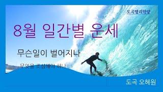 8월 운세 (丙申달), 일간별 운세 파악, # 무료공개