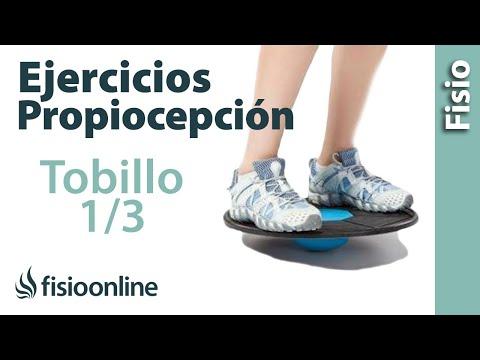Ejercicios de propiocepción o propioceptivos de tobillo - Nivel inicial - Reforzar el tobillo