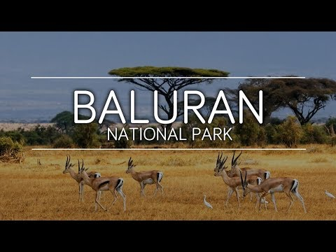 taman-nasional-baluran,-afrika-kecil-di-indonesia