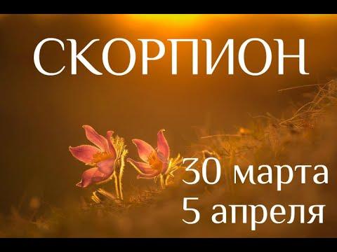 СКОРПИОН. Таро-прогноз на 30 марта-5 апреля 2020. Таро-гороскоп для Скорпионов от Ирины Захарченко.