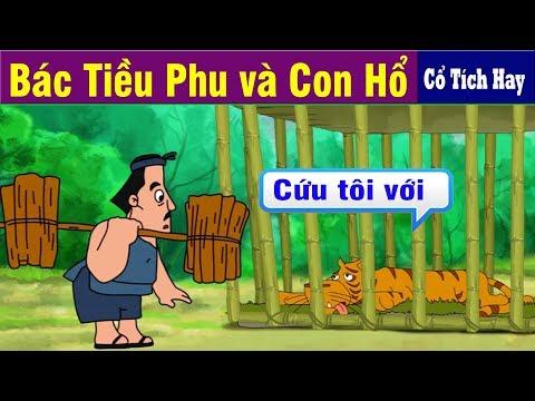 BÁC TIỀU PHU VÀ CON HỔ | Chuyen Co Tich | Truyện Cổ Tích Việt Nam | Phim Hoạt Hình Hay Nhất 2019