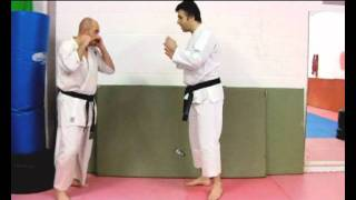 Heian Sandan BUNKAI STRATEGIES 2012 pt 1 oyo jutsu koryu elbow application Pinan karate kata
