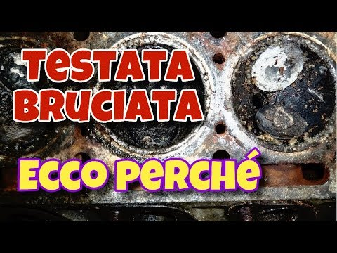 LE CAUSE | BRUCIATURA TESTATA