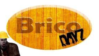 Bricodayz | Construye Tu Casa En Dayz Origins.