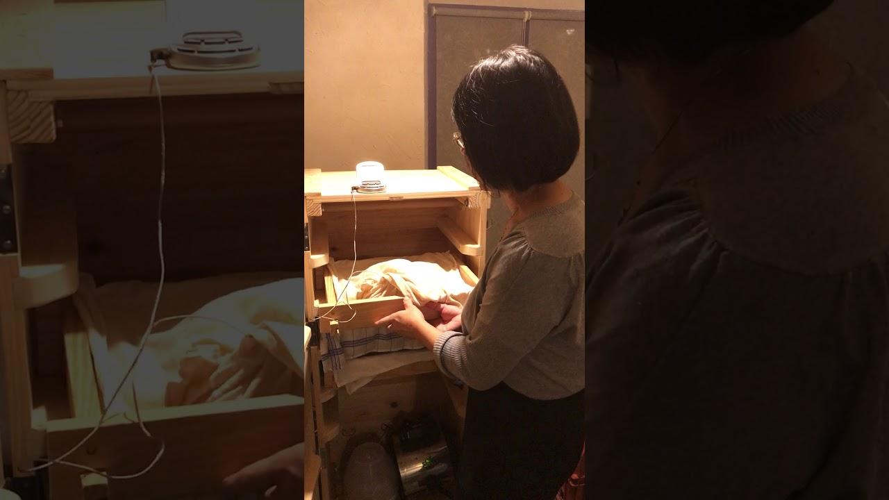 Koji Fermentation Part 2(Restaurant La 5ème Saveur)