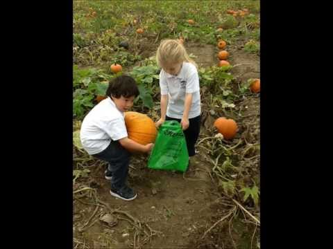 Reception Pick Pumpkins at Garson Farm