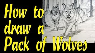 How to draw a pack of wolves
