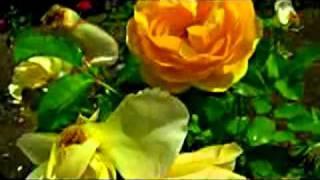 Aaji Bijono Ghare Rabindra Sangeet by Subir