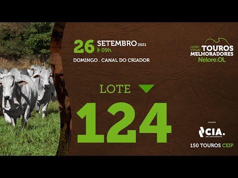 LOTE 124 - LEILÃO VIRTUAL DE TOUROS 2021 NELORE OL - CEIP