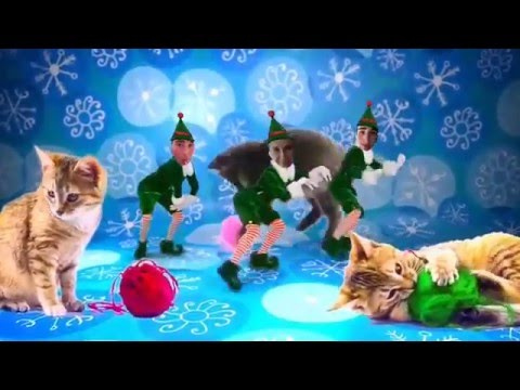 Elf Yourself: 12 Days of Christmas Cats Version