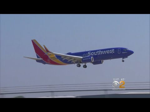 Southwest Changes Onboard Support Animal Policy