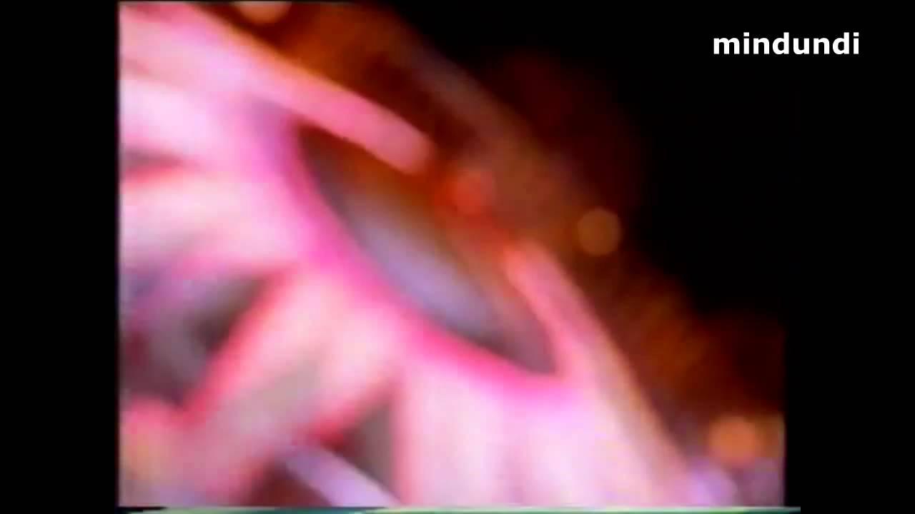 1992 Amarige de Givenchy, Paris - Perfume Eau De Toilette - Publicidad España Spain Anuncio Spot