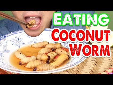 Exotic Food : Eating Alive Coconut Worm ( Food Challenge ) | longASMR