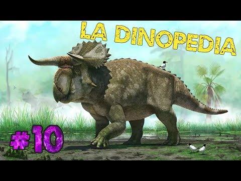 La DINOPEDIA de Chimmy! #10| Hoy: NASUTOCERATOPS