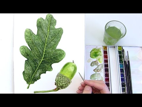 How to paint a realistic leaf in watercolour