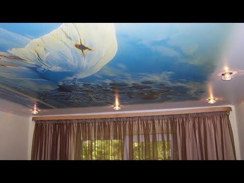 Установка натяжных потолков с природой в гостиной