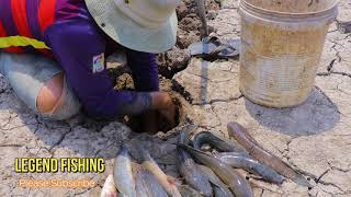 Best Fishing Underground Dry Land|A Poor Man Search Secret Hole Fishes