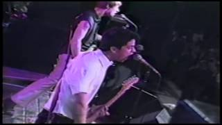Video Green Day Live at Hatch Shell Boston, 1994 download MP3, 3GP, MP4, WEBM, AVI, FLV November 2017