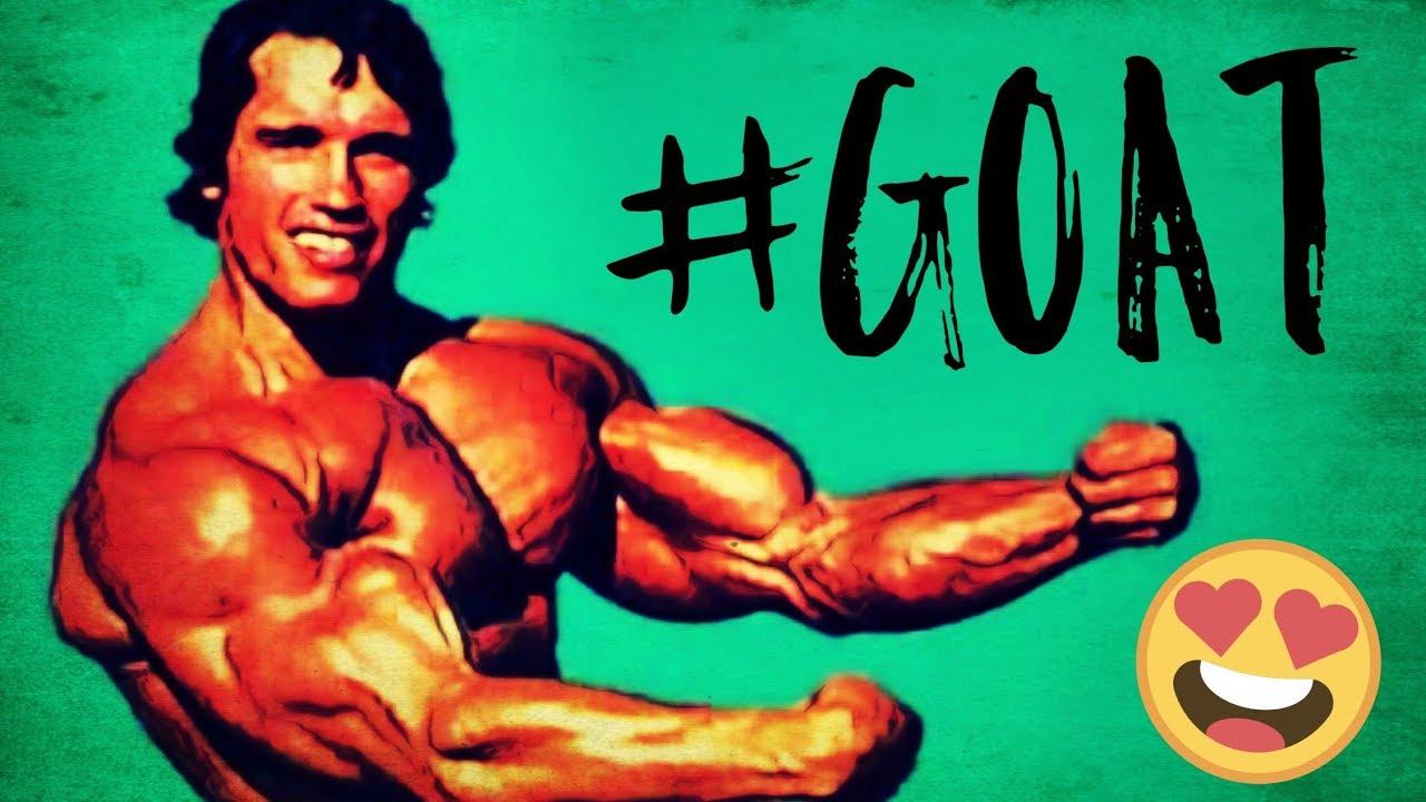 Arnold Schwarzenegger The Greatest Motivational Video