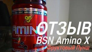Отзыв о BSN Amino X (Фруктовый Пунш)(BSN Amino X - аминки от знаменитого бренда спортивного питания. Смесь аминокислот BCAA, аланина, таурина и аргинина..., 2015-06-05T17:07:48.000Z)