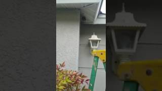 Repeat youtube video Man destroys yellow jacket nest with bare hands ORIGINAL