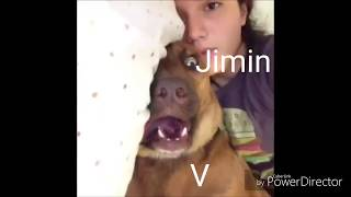 BTS as animal vines (bc that's original)