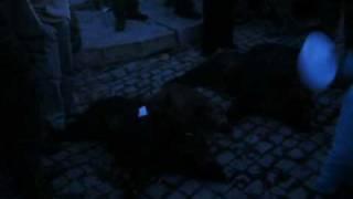 Batida em Veiga de Lila 22-12-2009 2ª parte