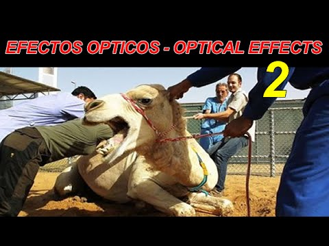 Optical effects efectos opticos 2 youtube - Efectos opticos youtube ...